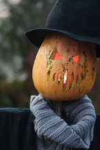 Scarecrow With Pumpkin For Halloween