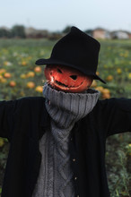 Halloween Scarecrow With Sparkling Light