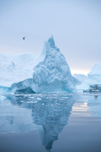 Icebergs Floating In The Arcti...