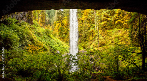 Fotografie, Obraz  View from behind North Falls at Silver Falls State Park, Oregon, USA