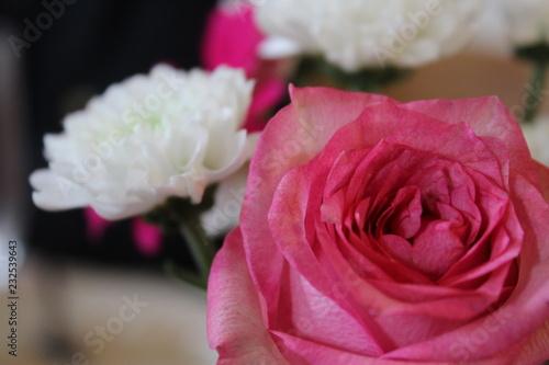 Blumen Sagen Mehr Als Tausend Worte Buy This Stock Photo