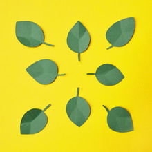 Paper Craft Green Leaves Over Yellow