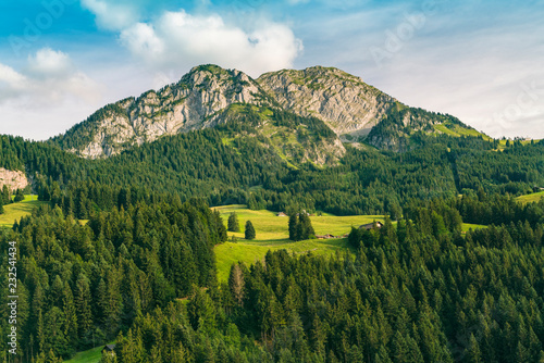 Foto op Canvas Landschap Landscape with mountains, hills and forest, Bern, Switzerland