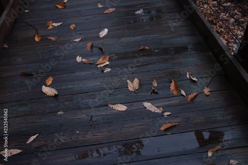 Wall Murals Cafe Autumn leaves on wooden walkway