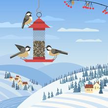 Chickadee Birds On Feeder. Birdfeeding Near Winter Rural Community. Small Bird Of Backyard Minimal Cartoon Design. Robin Birds Feeding By Sunflower Seeds. Birdwatching Background. Vector Illustration