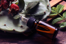 Erboristeria Pflanzenheilkunde Herbología Ft71098355 Herboristerie Ziołolecznictwo जड़ी-बूटी चिकित्सा צמחי מרפא Herbalism