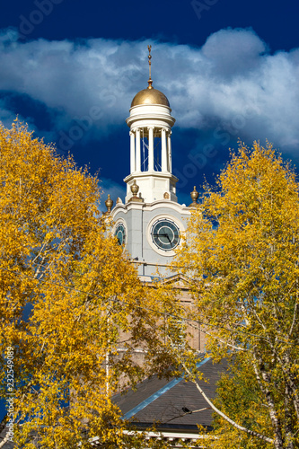 Fotografie, Obraz  historic Silverton Court House with Clock Tower surrounded in Autumn Color