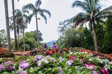 Mae Fah Garden