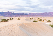 Death Valley At Sunset As Seen From The Sand Dunes
