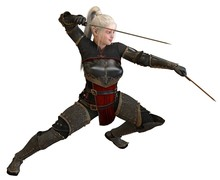 Woman Elf Warrior With Swords Isolated On White Background 3D Illustration