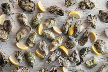 Oysters & Lemons