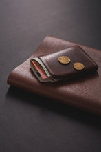 Brown Male Wallet