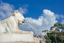 Fountain With Lion Sculpture A...