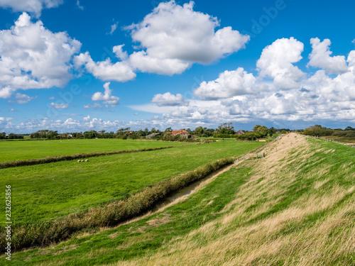 Cuadros en Lienzo Polder landscape with dike, farmhouse and farmland with ditch on Frisian island
