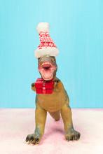 Cute Dinosaur With Santa Hat Holding Christmas Gift. Falling Snow.