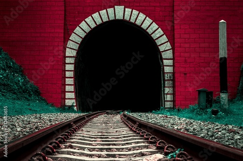 Foto auf Leinwand Kastanienbraun Entrance of old railway tunnel