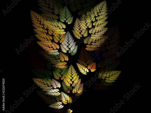 Fotografia, Obraz Leaves