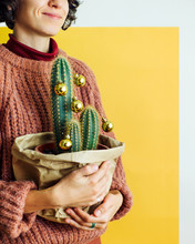 Cheerful Family Decorating Cactus With Baubles