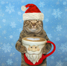 The Cat In Santa Claus Hat Holds A Big Cup Of Black Coffee. Snow Background.