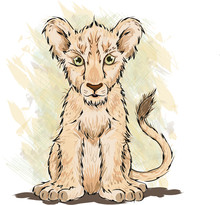 Lion Cub The Future King