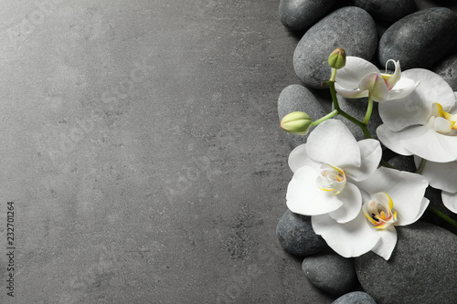 Poster de jardin Orchidée Flat lay composition with spa stones and orchid flowers on grey background. Space for text