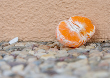 Half Peeled Clementine Or Tangerine On Gravel