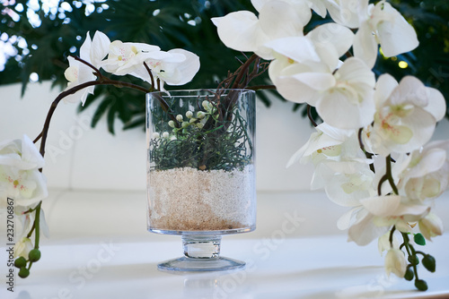 Fotografie, Obraz  Decorative white sakura flower in a glass vase, close-up