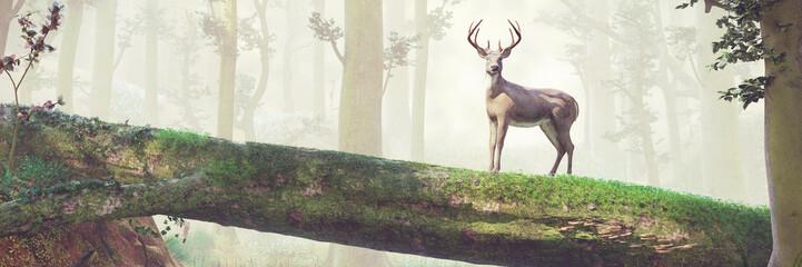 deer standing on fallen tree bridge in beautiful foggy forest landscape