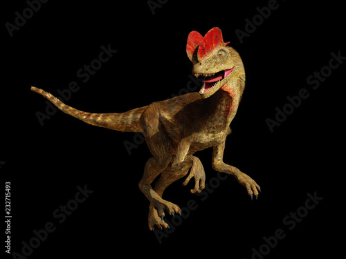 Fotografie, Obraz  Dilophosaurus, theropod dinosaur from the Early Jurassic period (3d illustration