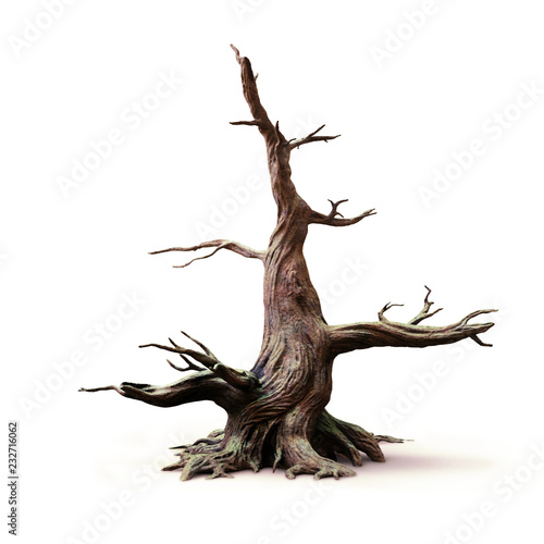 big old dead tree, isolated with shadow on white background Fototapete