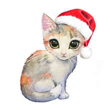Cute Cat With Christmas Santa Claus Hat, Hand Painted Watercolor Calico Kitten With Big Eyes With Festive Holiday Costume, Merry Christmas Image