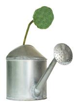 Watering Pot Made Of Aluminium...