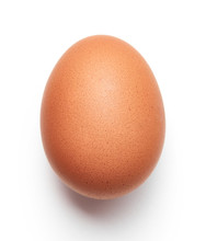 Brown Chicken Egg Isolated On ...