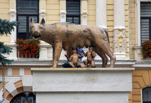 Fototapeta Copy of the Capitoline she-wolf in city of Brasov, Romania