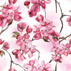 FototapetaSeamless floral pattern with pink flowers, watercolor.