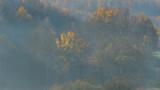 Fototapeta Na ścianę - Widok na jesienny las