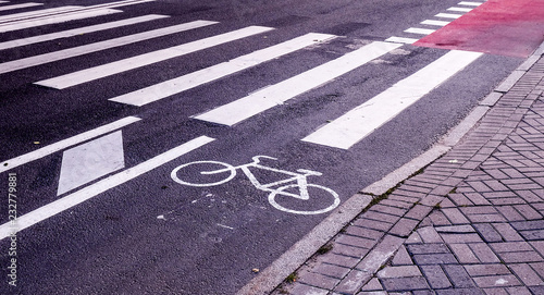 Bicycle lane on the road Wallpaper Mural