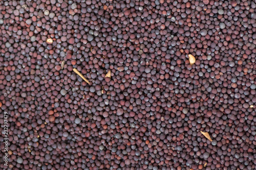 black mustard seeds background