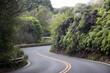 canvas print picture - Road to Hana als kurvige Strasse mit S-Kurve zwischen Bäumen auf Maui auf Hawaii