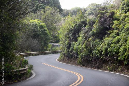 Foto auf AluDibond Olivgrun Road to Hana als kurvige Strasse mit S-Kurve zwischen Bäumen auf Maui auf Hawaii