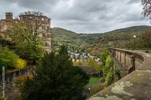 Fotografie, Obraz  Blick an Schlossruine vorbei