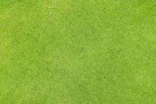 Golf Fairway Grass Texture Top...