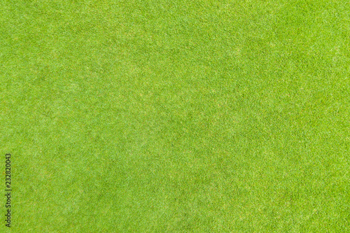 Photo Stands Grass Golf puttin green grass texture top view