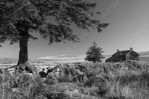 Poster Donkergrijs Stunning toned black and white landscape image of Nun's Cross Farm in Dartmoor