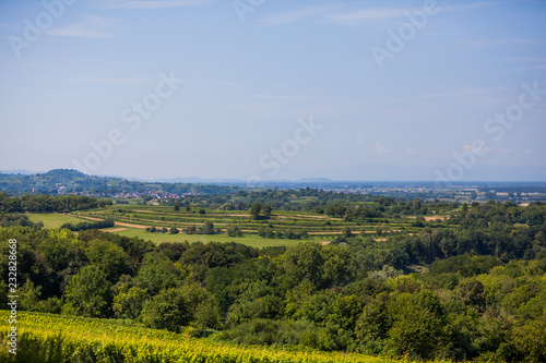 Staande foto Blauwe hemel Lanscape view to vineyards in rural southern Germany at sunny day