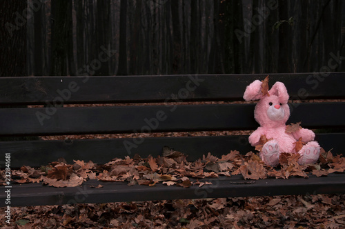 Photo Lonely forgotten abandoned teddy toy bunny/rabbit sat on an wooden bench covered with autumn leaves