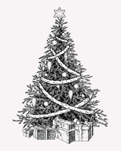 Christmas Tree Vintage Illustation. Hand Drawn Holiday Decor Element.