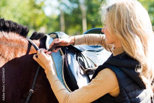 Fotografía  Girl equestrian rider equips horse. Horse theme