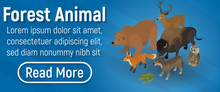 Forest Animal Concept Banner. ...