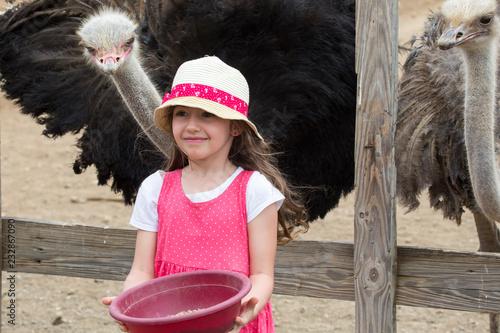 Kleines Mädchen füttert Strauß